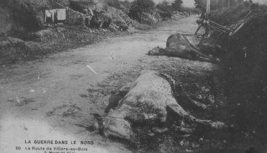 mont_st_elois_1916